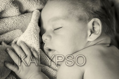 Monochrome Portrait Of Newborn Baby (kalypsoworldphotography) Tags: monochrome diaper newborn baby child cute portrait caucasian innocence little face infant skin resting sleeping adorable innocent happy boy kid lying relax young hand asleep healthy comfortable closeup sleep sleepy family son naked love tranquil expression hat indoors born closed newlife arm bed bedtime newbornbaby nude wool head 06months 06 months