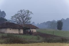Maikal hills - Chhattisgarh - India (wietsej) Tags: india fog landscape hills chhattisgarh a6000 maikal sonycarlzeissvariotessart1670mmf4zaoss