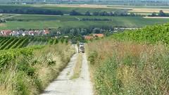 Abwärts nach Bechtolsheim