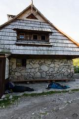 Prawie jak spanie na sianie :) (czargor) Tags: outdoor inthemountain mountians landscape nature tatry mountaint igerspoland