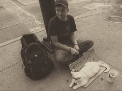 Chicago Homeless (Belinda Fewings (3 million views. Thank You)) Tags: belindafewings panasoniclumixdmc bokeh city street seaside colour colourful artistic pbwa creativeartphotograhy creative arty beautiful beautify beauty lovely outdoors outside out best depthoffield chicago illinois cat urban sepia august nice lonely homeless young alone streetscene candid portrait streetcat help man male feline streetcatnamedbob needsahome