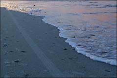 rolling ashore (Elly Snel) Tags: ameland eiland island nl strand beach zee sea tracks sporen