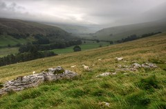 Foggy day in the Yorkshire Dales (Baz Richardson (trying to catch up!)) Tags: northyorkshire yorkshiredales littondale hills valleys sheep farmland landscapes