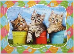 Siberian Kittens in Flowerpots (Leonisha) Tags: puzzle jigsawpuzzle cat chat katze ktzchen kittens