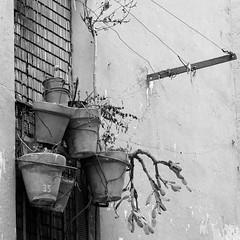 Balcons. (Toni Casals) Tags: fujifilm blackandwhite blancoynegro monochrome blancinegre balcons instagramapp square squareformat iphoneography