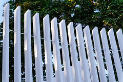 P-00423-No-024_rt (Steve Lippitt) Tags: 01000000 01015000 architecture art hydepark slats architectural architecturaldetail artistry building edifice edifices fineart landscape landscaping park parks sculpture statuary statue structures london unitedkingdom camera:make=fujifilm exif:aperture=80 exif:lens=xf1855mmf284rlmois exif:focallength=484mm geo:location=queencarolinestemplekensingtongardenshydeparkw2 geostate geo:country=unitedkingdom geo:lat=5150637 exif:model=xt2 exif:isospeed=200 exif:make=fujifilm geo:lon=017567833333333 geo:city=london camera:model=xt2