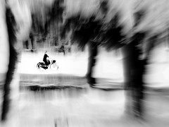 P3830085aaa (gpaolini50) Tags: explore emotive esplora explored emozioni explora photoaday photography photographis photographic portrait photo phothograpia pretesti dinamicita bw biancoenero bianconero blackandwhite