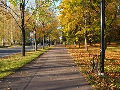 2016 Bike 180: Day 239, October 5 (olmofin) Tags: 2016bike180 finland vantaa myyrmki bicycle path fall autumn colors ruska vrit syysvrit polkupyr pyrtie