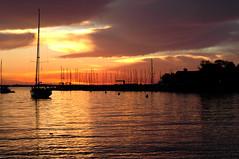 Sailboat in Annapolis (StateMaryland) Tags: sun sailboat marina sunrise river bay boat central severn anthony sail rise chesapeake eastport burrows
