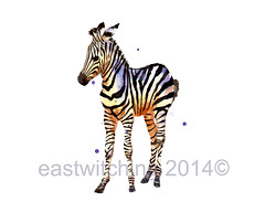 Animal Lover Gift, 8x10 print, ready to frame, animal paintings, wildlife art, eastwitching, ready to frame (Eastwitching) Tags: uk watercolor watercolour etsy childrensart animalillustrations welshartist africanwildlife animalpaintings 8x10print babyzebra watercoloranimals readytoframe ukartist kidswallart realisticanimalart zebraart zebrapainting animallovergift eastwitching animalartprints nurseryanimalart cutebabyzebra zebrawatercolor animalloverart contemporaryanimalart buyukart watercolourwildlife