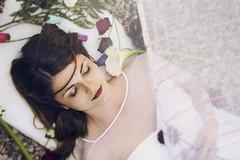 bella durmiente (Anna Jiménez) Tags: sleeping portrait white history girl beauty rose fairytale cuento retrato flor rosa fantasy fantasia bella sleepingbeauty durmiente sueño grimm dorment hermanosgrimm