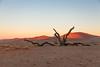 IMG_4406.jpg (The_Green_Ninja) Tags: africa azn namibia exodus discover dune45 sossuvlei