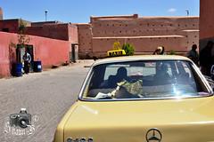 Taxi in Marrakesh (ShaunMYeo) Tags: morocco maroc marrakech marrakesh marruecos marokko marrocos fas marokas marokk maroko