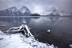 Weather changes (John Andersen (JPAndersen images)) Tags: november mountain snow cold ice clouds rockies stump geology kananaskislake