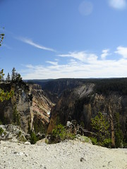 Yellowstone National Park (richardblack667) Tags: trees landscapes parks grand yellowstone wyoming nationalparks canyons