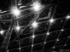 Squares (bnq.hendrix) Tags: holland monochrome station lights steel central railway ceiling haag centraal