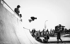 _MG_3792 (Castella PhotoVideo) Tags: chris skateboarding cole mikey jorge skate taylor wes kremer simoes