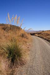 new zealand landscape (journeyman62) Tags: road newzealand plants canon landscape bluesky nz southisland otago centralotago toitoi gravel railtrail rebelxti