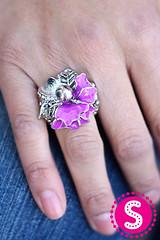 1143_ring-purplekit2afeb-box02