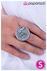 224_ring-silverkit1may-box04