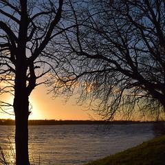Eerste foto's Nikon D5300-130.jpg (marielledevalk) Tags: autumn sunset sky tree water landscape evening zonsondergang herfst boom avond zon landschap rivier nikond5300