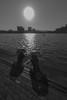 Sunny Rotterdam (marcovandenarend) Tags: rotterdam kade sunny zon posthumalaan canoneos500d canonefs1018mmf4556isstm