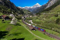 Cargo Doppel am Gotthard (TheKnaeggebrot) Tags: train swiss sbb 420 cargo international ffs 620 gotthard güterzug cff re44 re66 gottardo gurtnellen klv gotthardbahn sbbc nordrampe