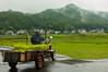 farmer delivers rice plants in Ashikaga (Balancingtouch-Adam) Tags: japan morning mountains ricefields farmer mist 足利市 ashikaga