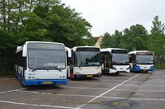 11.06.2016 (II); 50 jaar standaardbus (chriswesterduin) Tags: hbm htm