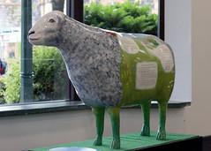 Mrs Heelis (Cumberland Patriot) Tags: sheep painted go supermarket cumbria booths trust mrs keswick calvert ewe cumbrian herdwick heelis goherdwick