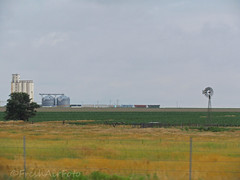 Looking For Toto (RootsRunDeep) Tags: windmill field train corn midwest farm grain harvest grow silo kansas crops agriculture windmillwednesday