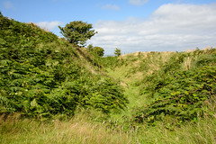 Photo of Castle-an-Dinas