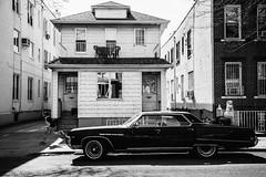 Carefree (JMJ Cinematics) Tags: canon blackandwhite streetphotography brooklyn nyc newyorkcity newyork ny freelancephotographer monochrome monochromatic jmjcinematics josemiranda gettyimages