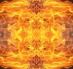 Star Fire (rhonda_lansky) Tags: red orange yellow fire hot heat pinefire burn fireart writing poems poemsandstories lansky rhondalansky aurorarose1st campfire firepit