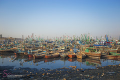 Fish Harbour karachi (S.M.Rafiq) Tags: fishharbour karachi fish harbour boats pakistan smrafiq fishharbor fishing colorful water sea sindh traditional fisherman