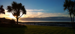 Early Douglas sun. (Chris Kilpatrick) Tags: chris douglas isleofman sunri palmtrees landscape seascape sea irishsea grass september outdoor nature nokialumia1020
