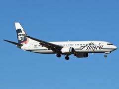 N559AS Boeing 737-890 ASA  LAS (Jetstar31) Tags: n559as boeing 737890 asa las