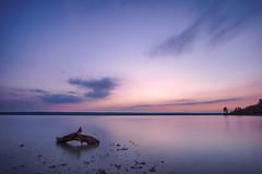 Purple lake (kaihornung-photography) Tags: lake ammersee sonya6000 samyang12mm kaihornung bayern bavaria sky clouds blue hour sunset sonnenuntergang blaue stunde herrsching ruhe travel quiet nature water purple lila wood holz longexposure langzeitbelichtung