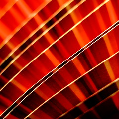 Next July we collide with Mars (vertblu) Tags: paper printed print paperstrips red redtones stripes striped abstract abstrakt abstraction diagonal 500x500 macromode macro makro lines curved curves curvy curve patterns pattern vertblu monochrome dof printedpaper bsquare abstractsquared