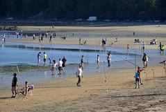 Un dia de pesca (cazador2013) Tags: pesca gente playa costa arena arboles orilla mar