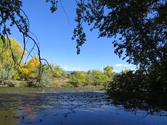 River Rocks (Patricia Henschen) Tags: arkansasriver canoncitycolorado riverwalk usroute50