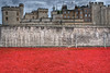 Blood Swept Lands And Seas Of Red (Joebelle) Tags: london art canon geotagged poppy poppies geotag hdr toweroflondon photomatix 40d canon40d platinumheartaward bloodsweptlandsandseasofred bloodsweptlands seasofred