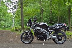 My Black Pearl 2014 (Rob de Hero) Tags: triumph speed triple speedtriple 955i 2001 t509 motorbike motorcycle motorrad