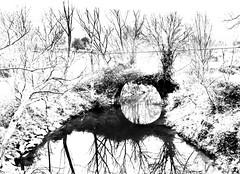 Ojo de puente Birle, Mungia (Explore January 4th, 2015) (ines valor) Tags: puente euskadi mungia birle