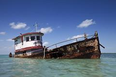 caye caulker cargo (eb78) Tags: belize centralamerica cayecaulker caribbean shipwreck derelict abandoned decay travel