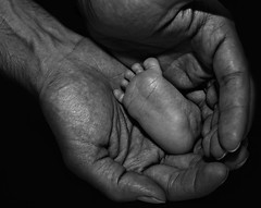 A new born's foot (arash_rk) Tags: life new bw baby foot born babyfoot     bwfoot   babyblackwhite