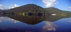 Vosges, France (denismartin) Tags: denismartin vosges vogesen france hiver lake reflection reflexions reflet forest cloud sky gerardmer forestimages lorraine lac lacdegerardmer