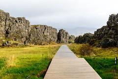 Allmannagja (p.fabian) Tags: island iceland islandia weg