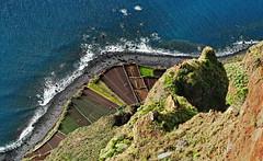 Cabo Giro; Madeira (blacky_hs) Tags: ocean portugal garden cabo wine atlantic madeira garten wein atlantik giro girao steilklippe terrassenfelder platinumheartaward