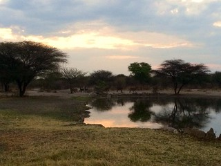Botswana Hunting Safari 17